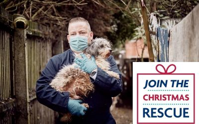 Join the Christmas Rescue